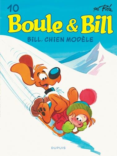 Bill, chien modèle