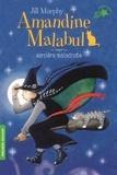 Amandine Malabul Tome 1 : Sorcière maladroite