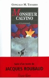 Monsieur Calvino et la promenade