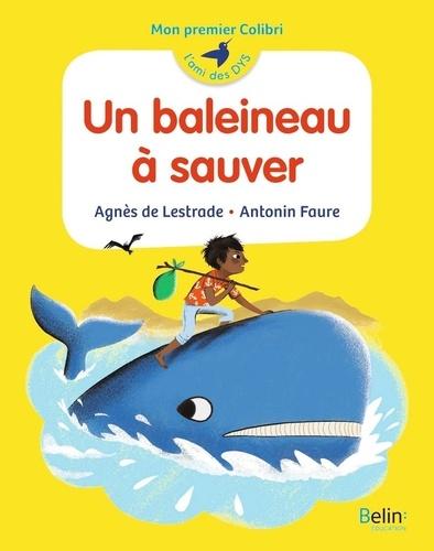 Un baleineau à sauver / Agnès de Lestrade | Lestrade, Agnès de (1964-....). Auteur
