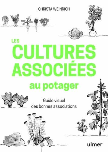 Les cultures associées au potager  : guide visuel des bonnes associations