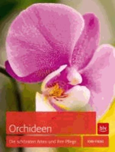 Orchideen - Die schönsten Arten und ihre Pflege.