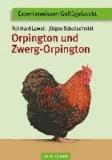 Orpington und Zwerg-Orpington.