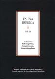 Oscar Garcia-Alvarez et Luitfried V Salvini-Plawen - Fauna ibérica - Volumen 38: Mollusca: Solenogastres, Caudofoveata, Monoplacophora.