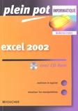 P Pichereau - Excel 2002. 1 Cédérom