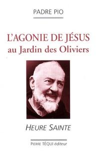 Lagonie de Jésus au Jardin des Oliviers - Heure sainte.pdf
