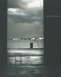 Palaggi Brigitte - Autres & Pareils la revue t.26/27/28/29 ; Parmi d'autres possibles.