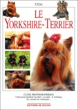 Paola Pesce - Le Yorkshire-Terrier.