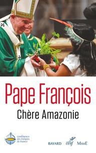 Pape François - Chère Amazonie.