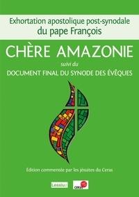 Exhortation post-synodale sur l'Amazonie commentée -  Pape François pdf epub