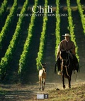 Papianille Mura - Chili, pays de vins et de montagnes.