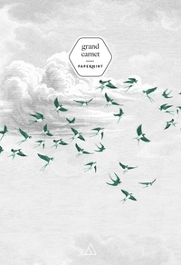 Papier cadeau - Grand Carnet PaperMint Swallow Cloud vert.