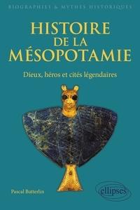 Pascal Butterlin - Histoire de la Mésopotamie - Dieux, héros et cités légendaires.
