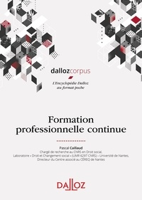 Pascal Caillaud - Formation professionnelle continue.