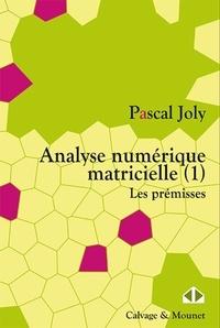 Analyse numérique matricielle - Tome 1, Les prémisses.pdf