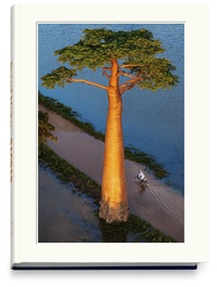 Openwetlab.it Baobab - L'arbre magique Image