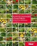 Pascale Bérendès - Plantes sauvages comestibles - 40 recettes originales.