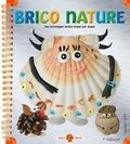 Pascale Gallimard - Brico nature - Des bricolages faciles étape par étape.