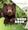 Pascale Hédelin - L'ours brun.