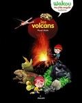 Pascale Hédelin - Les volcans.