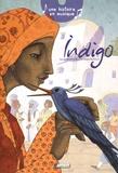 Pascale Maupou Boutry et Régis Delpeuch - Indigo.
