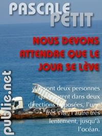 Pascale Petit - Nous devons attendre que le jour se lève - vu de loin, deux personnages courant vers la mer.
