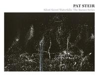 Pat Steir - Pat Steir - Silent Secret Waterfalls: The Barnes Series.