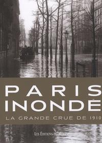 Patrice de Moncan - Paris inondé - La grande crue de 1910.