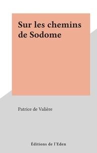 Patrice de Valière - Sur les chemins de Sodome.