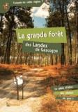 Patrice Julien - La grande forêt des Landes de Gascogne.
