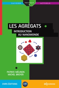Patrice Melinon et Michel Broyer - Les agrégats - Introduction au nanomonde.