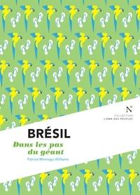 Patrice Montagu-Williams - Brésil - Dans les pas du géant.