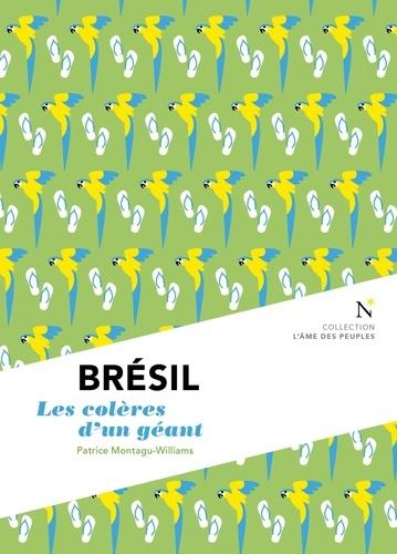 Brésil. Les colères d'un géant 2e édition