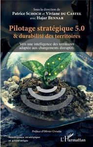 Patrice Schoch et Viviane Du Castel - Pilotage stratégique 5.0 et durabilité des territoires - Vers une intelligence des territoires adaptée aux changements disruptifs.