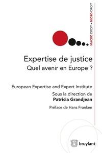 Goodtastepolice.fr Expertise de justice - Quel avenir en Europe ? Image