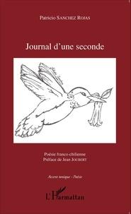 Patricio Sanchez Rojas - Journal d'une seconde.