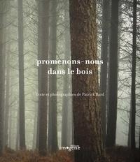 Patrick Bard - Promenons-nous dans le bois.