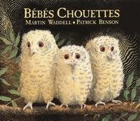 Patrick Benson et Martin Waddell - Bébés chouettes.