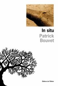 Patrick Bouvet - In situ.
