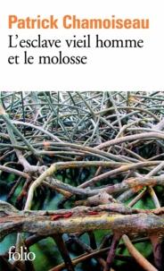 Patrick Chamoiseau - L'esclave vieil homme et le molosse.