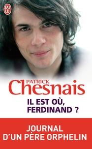 Patrick Chesnais - Il est où Ferdinand ? - Journal d'un père orphelin.