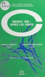 Patrick Criqui et Nina Kousnetzoff - Énergie 1995, après les chocs.