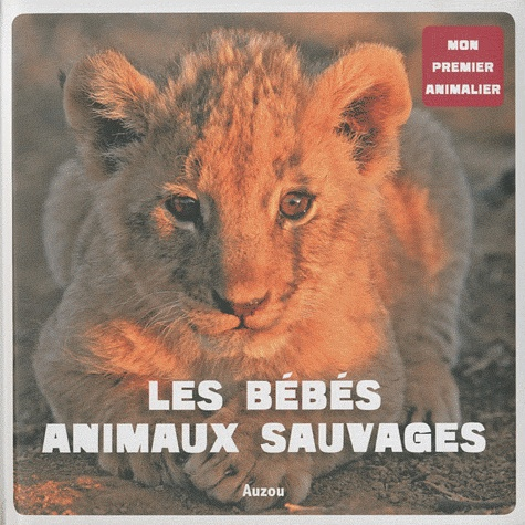 Patrick David - Les bébés animaux sauvages.