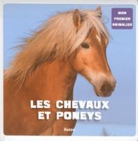 Patrick David - Les chevaux et poneys.