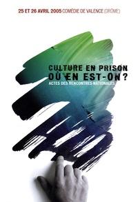 Patrick Facchinetti - Culture en prison : où en est-on ? - Actes des rencontres nationales, 25 et 26 avril 2005, Comédie de Valence, Drôme. 1 Cédérom