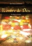 Patrick Giani - Comment positiver les transits dissonants de Pluton.