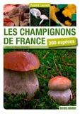 Patrick Laurent - Les champignons de France - 300 espèces.