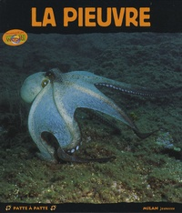 Deedr.fr La pieuvre Image