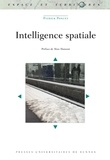 Patrick Poncet - Intelligence spatiale.