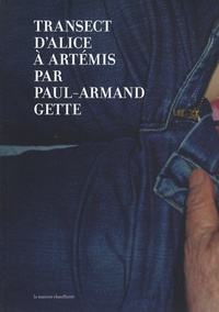 Paul-Armand Gette - Transect d'Alice à Artémis.